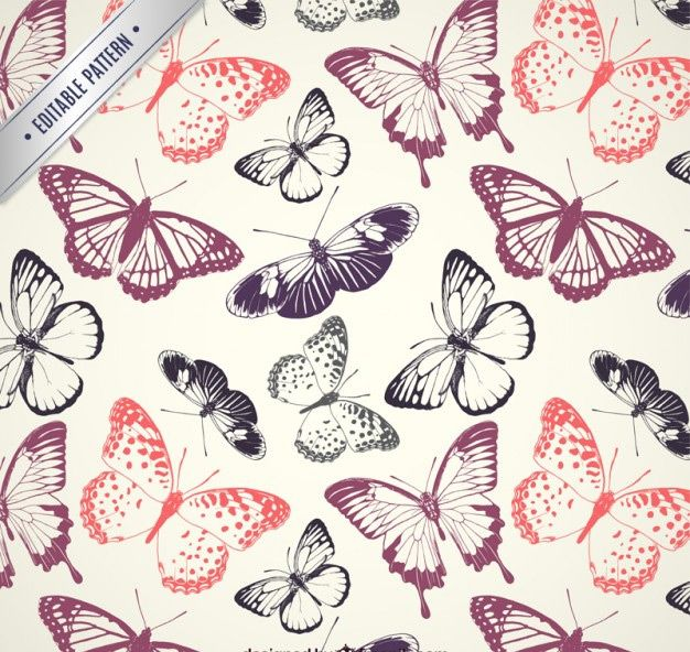 پترن پروانه  butterflies pattern