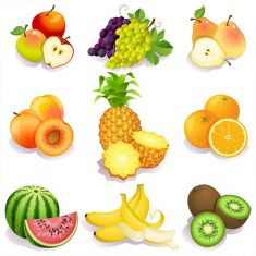 وکتور میوه fruit vector