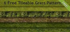 6 نوع پترن چمن 6 free tileable grass patterns