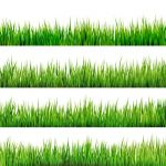 وکتور چمنrealistic grass borders design vector